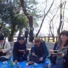 多摩川台公園にてお花見